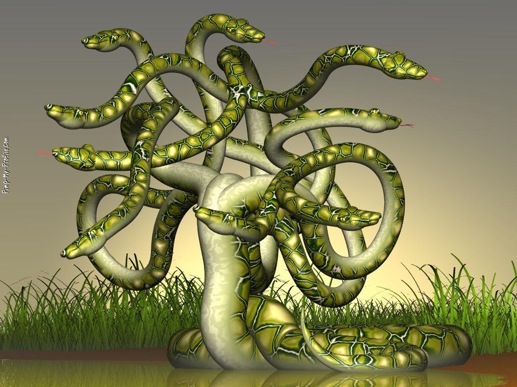 Pics For > 10 Headed Snake